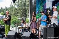 2015 High Sierra Music Festival - Tim Flannery