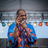 Waterfront Blues Festival 2016 - Femi Kuti