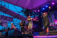Waterfront Blues Festival 2016 - Liv Warfield