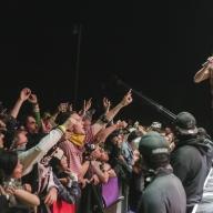 Desert Daze 2017 - Iggy Pop