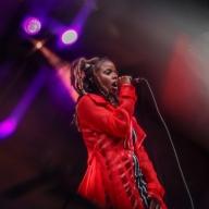 Noise Pop 2019 - Queens D.Light